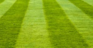 lawn mowing sutherland gardening service